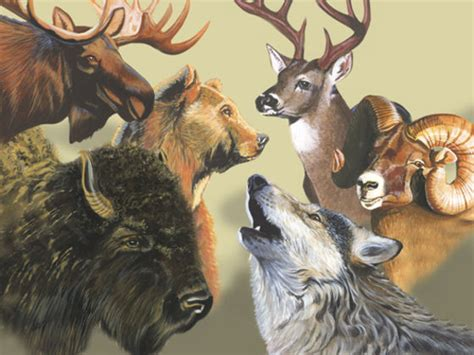 What Is Your Native American Spirit Animal?