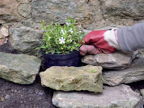 Make a Shady Rock Garden | Landscaping Ideas and Hardscape