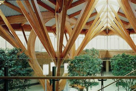 A Tree-Filled Atrium to Inspire Patients | Architect